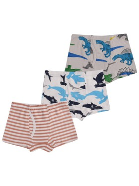 Meet My Feet Move Reed (Boxer Briefs for Boys)