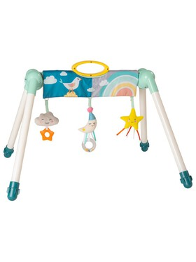 Taf Toys 2-in1 Mini Moon Take to Play Baby Gym