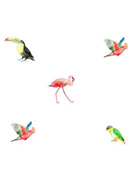 Baboo Basix Birds of Prey Peel and Stick DIY Wall Decals