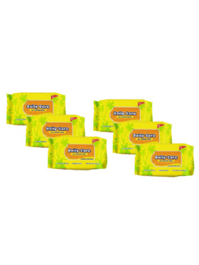 Daily Care Wipes All Purpose Wipes Powder-Fresh Scent (20 sheets) Pack of 6
