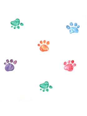 Baboo Basix The Prints and the Paw-per Peel and Stick DIY Wall Decals