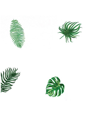 Baboo Basix Tropical Calm Peel and Stick DIY Wall Decals