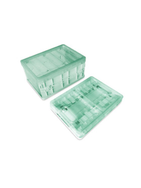 Lily and Tucker Collapsible Storage Organizer